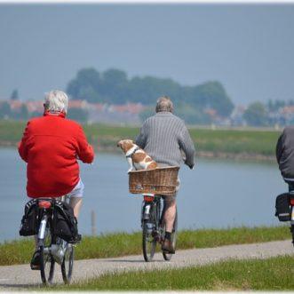 Quelles activités faire à la retraite ?