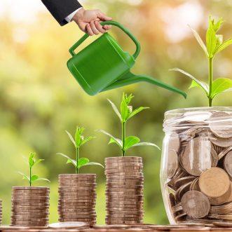 Les 3 placements financiers qui rapportent le plus