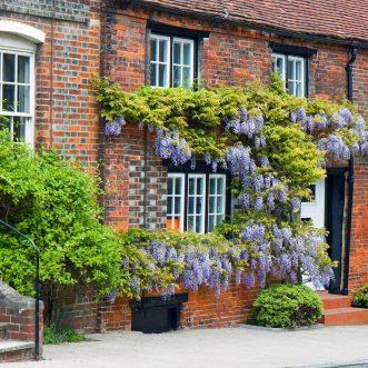 Préparez votre retraite avec un achat de maison en résidence senior